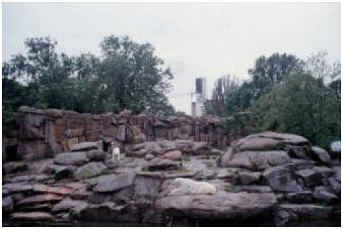 柏林動物園04