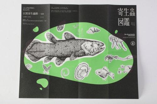 寄生蟲圖鑑-6