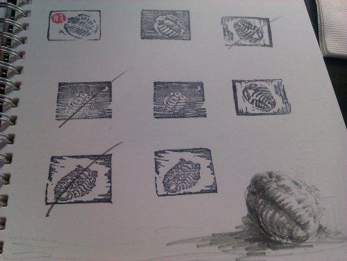孔雀獸10