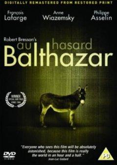 驢子巴爾扎撒