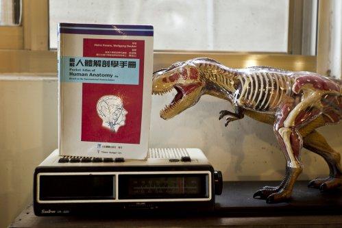 圖解人體解剖學手冊