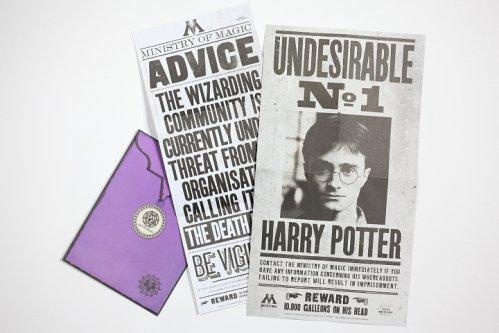 哈利波特立體書:通緝哈利波特的布告