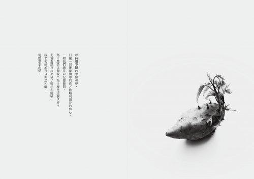 歲夢紀-9
