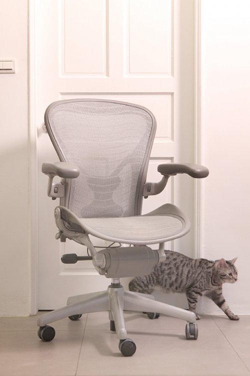 服裝設計師的7神器:0416-人體工學椅